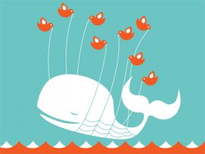 twitter_fail_whale-300x225 Facebook quiso comprar Twitter